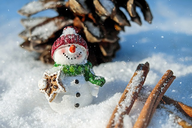 sněhulák ve sněhu
